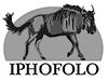 iphofolo_logo_BN