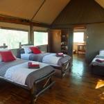 iphofolo_lodge&tent (15)